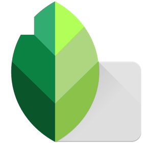 Snapseed Apk for Android Free Download